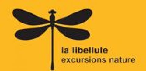 Nouveaux programmes des excursions et du centre nature - Association la Libellule