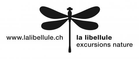 Association la libellule - excursions nature