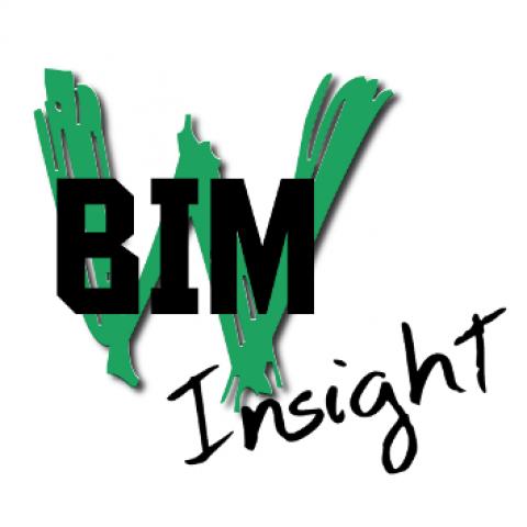 Cyril Waechter BIM Insight
