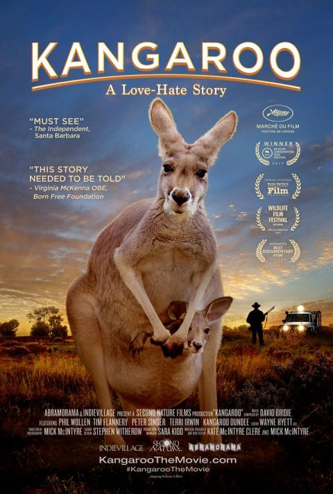 Kangaroo, A Love-Hate Story + discussion