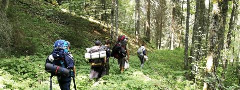 La Libellule propose tout l'été des excursions nature