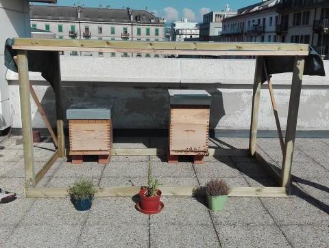 L'association Apidae présente durant les Assises Européennes de la Transition Énergétique.