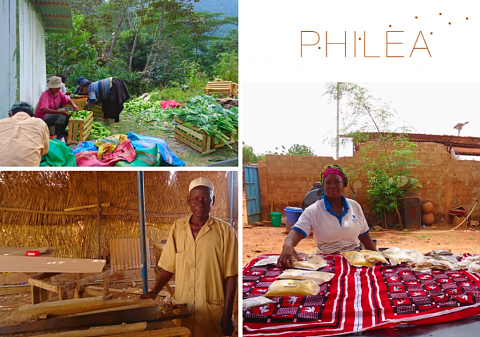 Le FIG (Fonds International de Garantie) devient Philea!