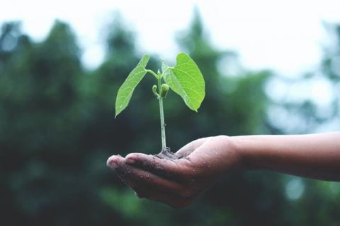La transition écologique n'aura plus de secret pour vous avec ce MOOC - Article de Novethic