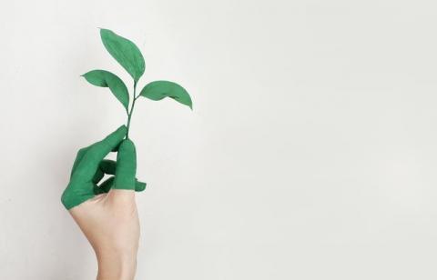 Économie durable: tout un programme ! - Article dans la Tribune de Genève