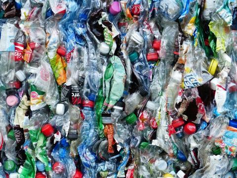 Quand la lutte contre le plastique devient un business florissant