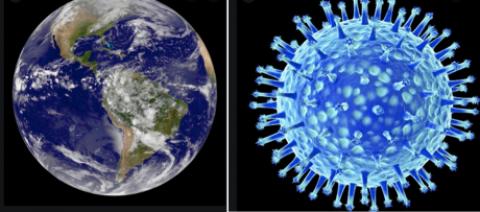Le petit virus qui change le monde - article de René Longet